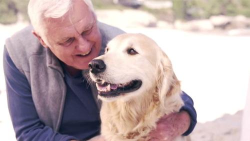 「犬 + お爺ちゃん」とかいう至高の組み合わせ17