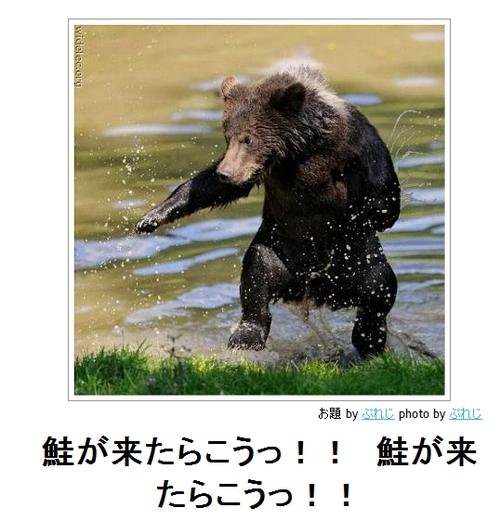 動物のボケて画像貼りましょう6