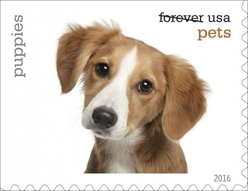 犬が描かれた切手の画像をひたすら貼ってくよ