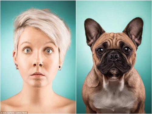犬の性格は飼い主に似る15