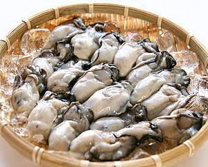 パグと剥き牡蠣2