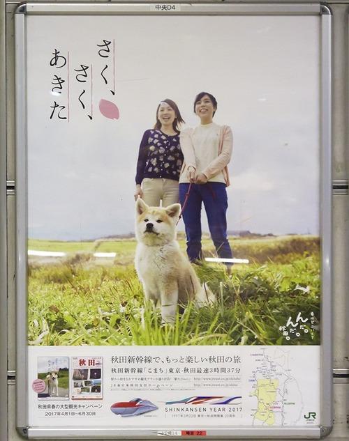 秋田県のポスターの秋田犬が可愛すぎる12