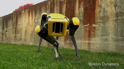 「完全なワンちゃん」なロボット犬が公開される