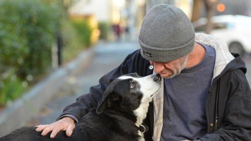「犬 + お爺ちゃん」とかいう至高の組み合わせ11