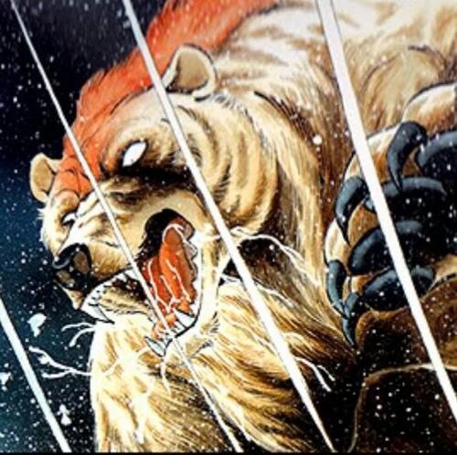 民家に侵入のクマ2頭、小さな犬に撃退される