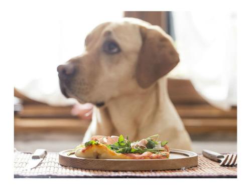 俺「犬に人間の食い物やるな!」