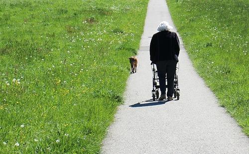 「犬 + お爺ちゃん」とかいう至高の組み合わせ16