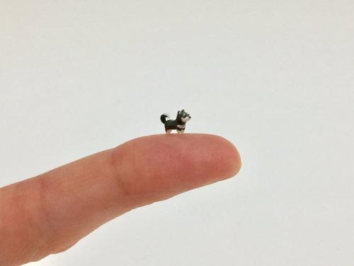 5mmしかない柴犬が可愛い