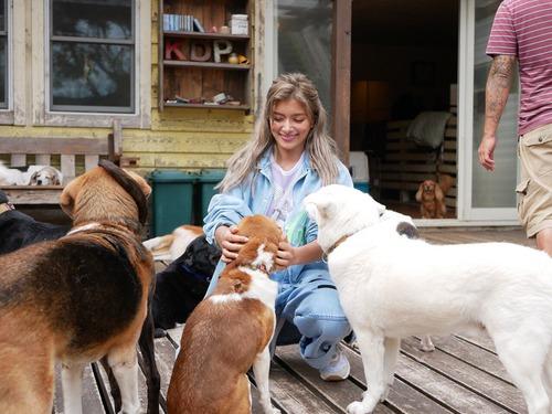 ローラ「昨日は犬の保健所に行ってきたんだ