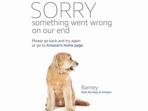 Amazon犬図鑑11