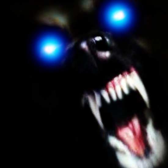 犬の怒ってる顔が好きなんだが