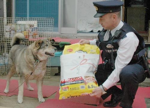 お手柄犬、警察官を誘導 倒れた飼い主救う