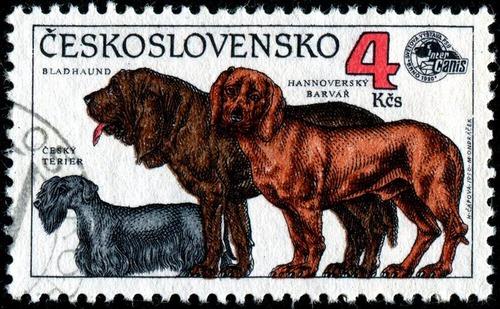 犬が描かれた切手の画像をひたすら貼ってくよ19