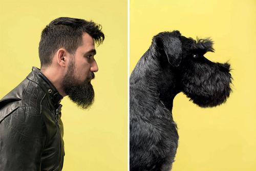 犬の性格は飼い主に似る23