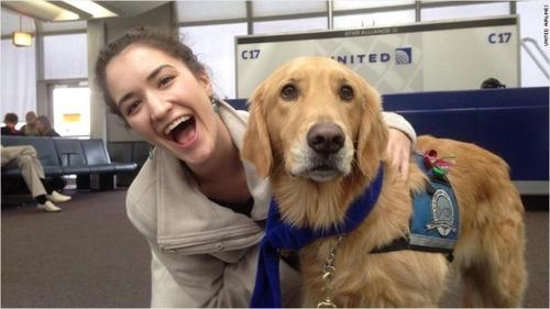 ストレス解消に「癒やし犬」、全米の7空港に230頭