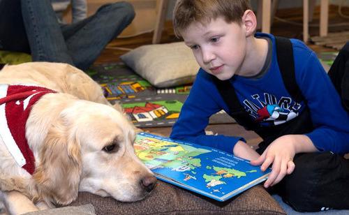 イヌに絵本を読み聞かせ