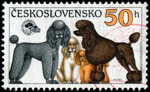 犬が描かれた切手の画像をひたすら貼ってくよ17