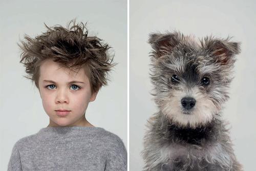 犬の性格は飼い主に似る17