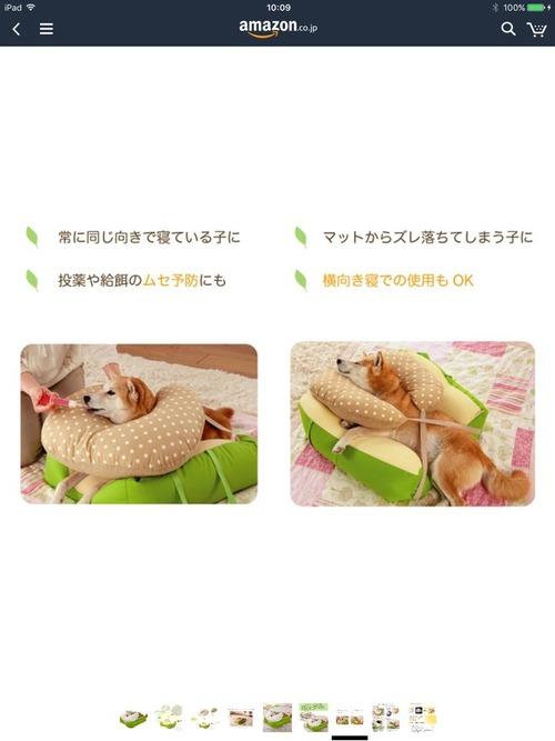 寝たきりのワンコにピッタリな老犬用のベッド4