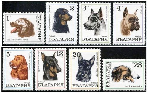 犬が描かれた切手の画像をひたすら貼ってくよ12