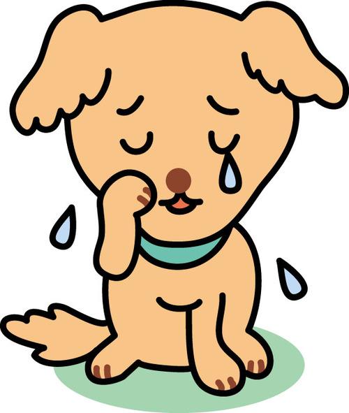 「迷い犬探し」費用名目で160万円騙し取った男を逮捕