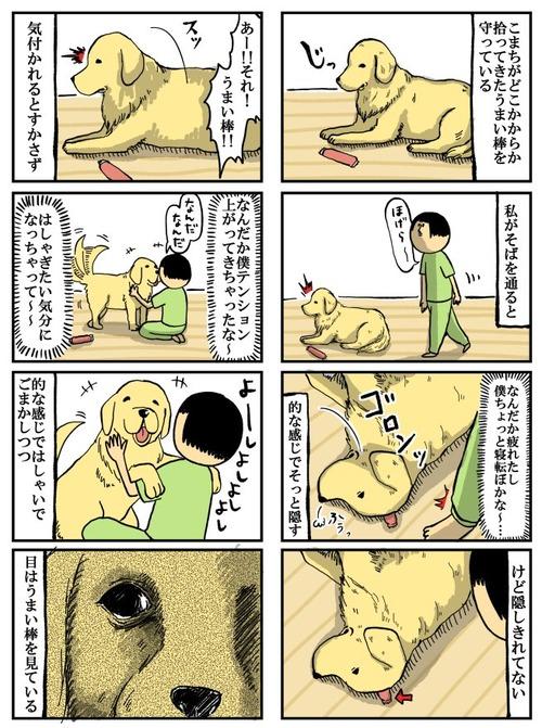 大型犬には5歳児くらいの知能があるらしい