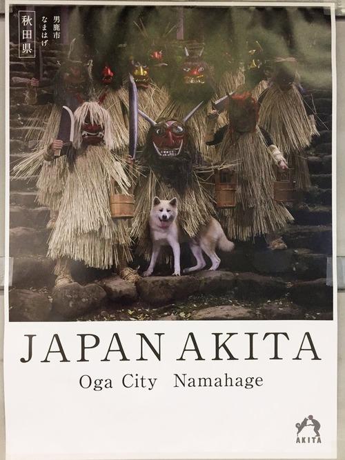 秋田県のポスターの秋田犬が可愛すぎる