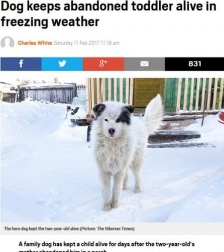 氷点下20度の中2歳男児を飼い犬が温め続ける