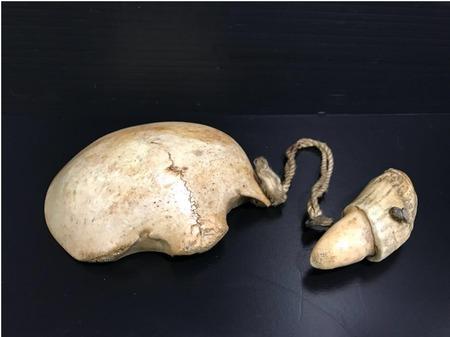頭蓋骨で出来た盃「髑髏杯」がヤフオクに出品2