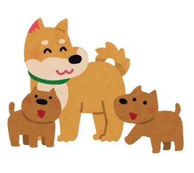 dog_family (1)