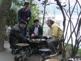 Playing-chinese-chess