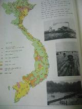 ベトナム マラリア報告書5