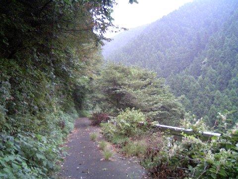 栃谷坂沢林道1