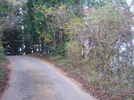 西岸の道(2)
