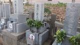 伯父伯母のお墓