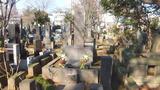 泉鏡花のお墓