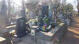 大川橋蔵の墓