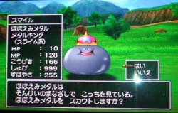DQ8チーム