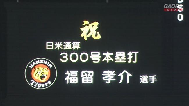 WS000282