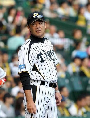 和田豊がミスタータイガース扱いされないのはおかしい