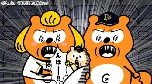 【ん報】バファローズポンタのオトウット、ポンちゃん(0歳)、初んほー