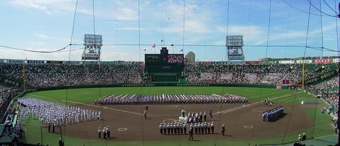 Hanshin_Koshien_Stadium_2007-19