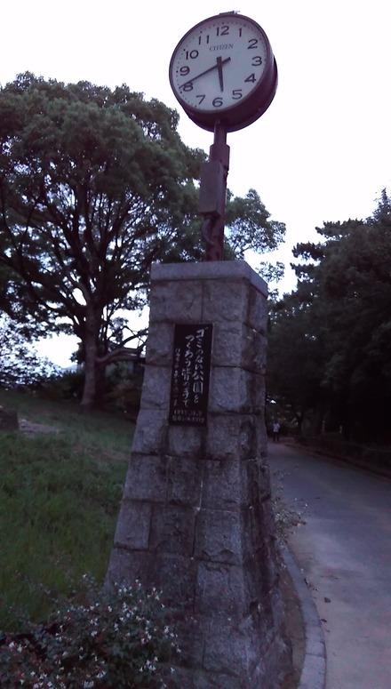 IMAG0246