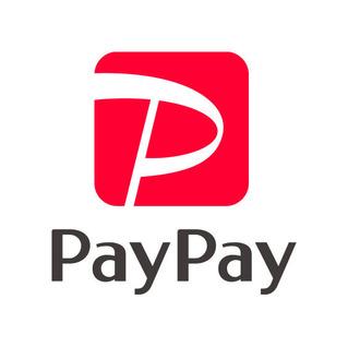 paypay_logo_2