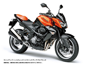 z1000-2009-or800