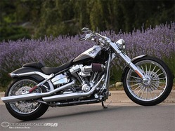 Harley-Breakout-CVO-Softail