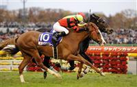 20091129-00000512-sanspo-horse-thum-000