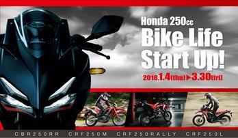 bikelifestartup