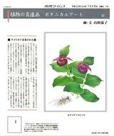 7月第2週・80回・ホテイアツモリソウ・ブログ