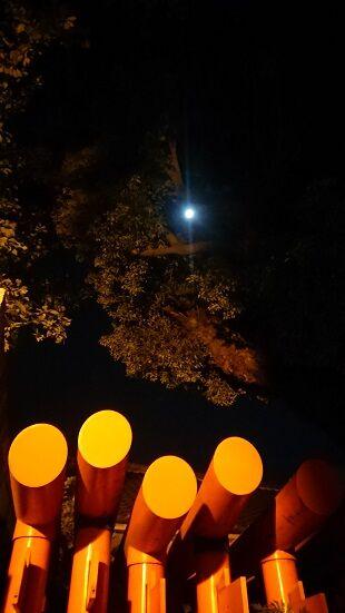 DSC_0074-気温18度の空気凛とした快晴の夜